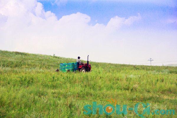 北京至丰宁坝上包车之京北第一草原两日游记